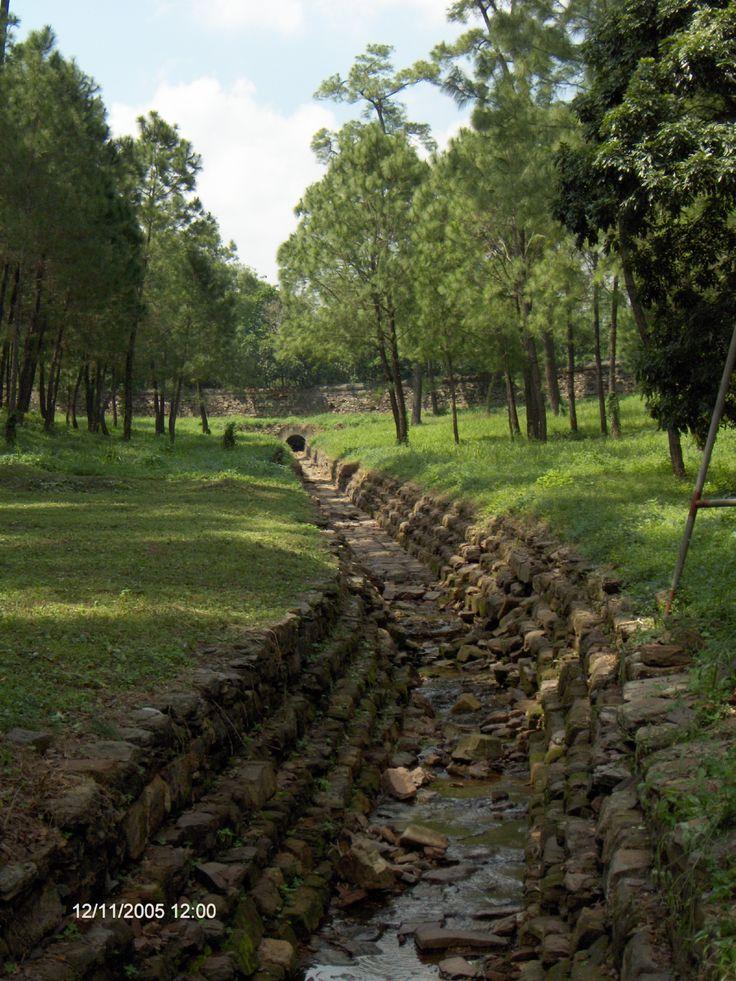 Kejsargrav