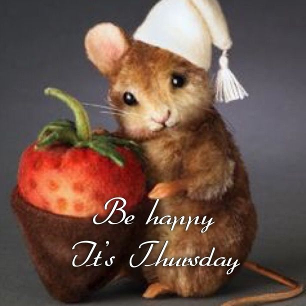 1000 ideas about happy thursday morning on pinterest good morning