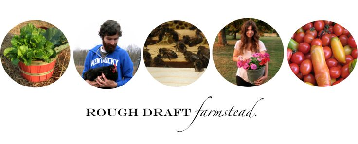 Rough Draft Farmstead. » Two people, trying to live simply and sustainably on a small farm in Kentucky.