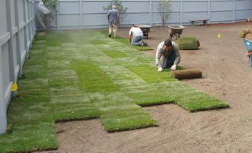 Stappenplan bij het aanleggen van een gazon met graszoden