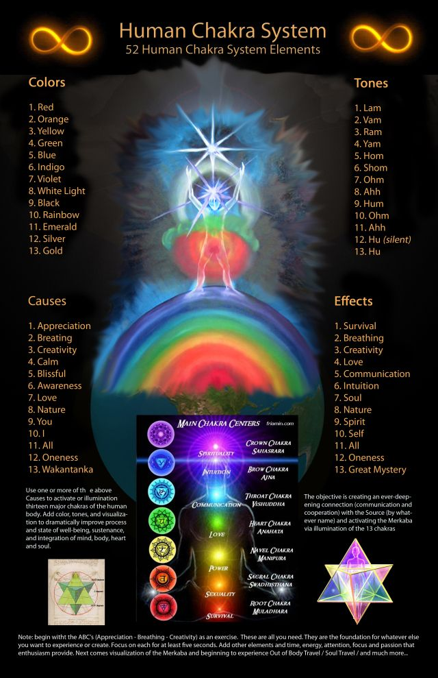 aspects and attributes of the Human Energy System