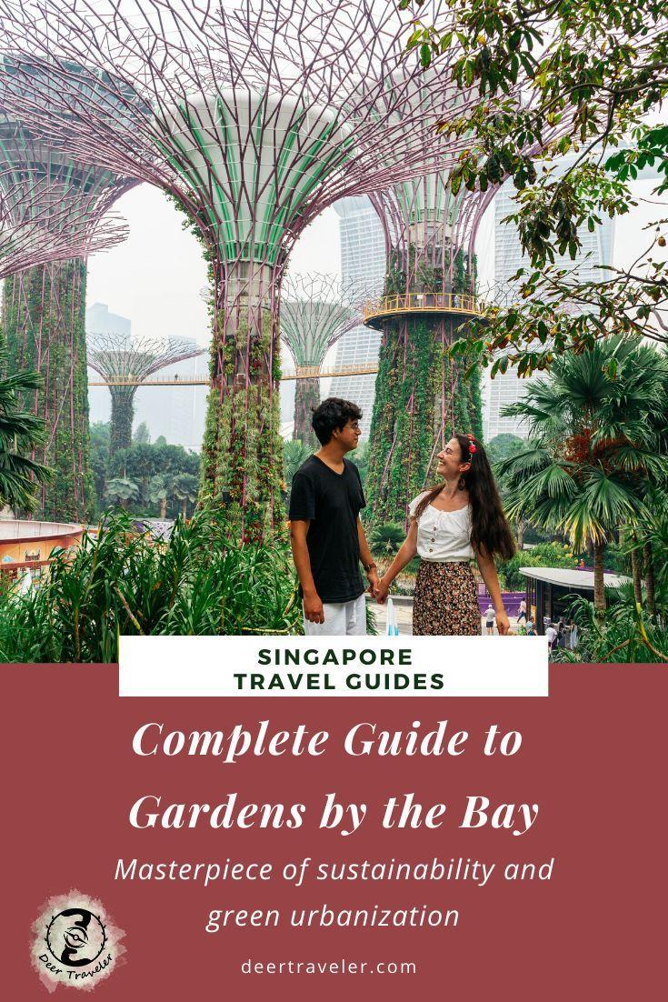 c8fe6f4b0f97576215cd5f8733931ef2 - How To Visit Gardens By The Bay