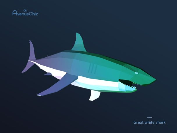 3D low poly great white shark