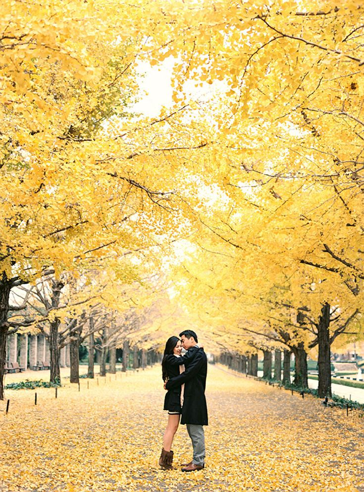 Fall leaves // Ricky and Debbie's Romantic Engagement Shoot in Tokyo, Japan