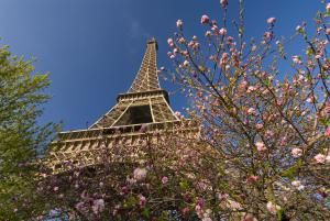 Make the Most of Paris in March: Weather Outlook and What to Do