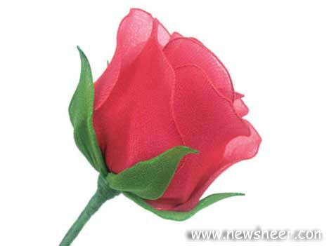HOW TO MAKE NYLON STOCKING ROSE