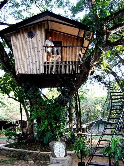 TREE HOUSE – amazing treehouse! 12 Modern Tree House Designs, Tree House, Zamboanga City, Mindanao