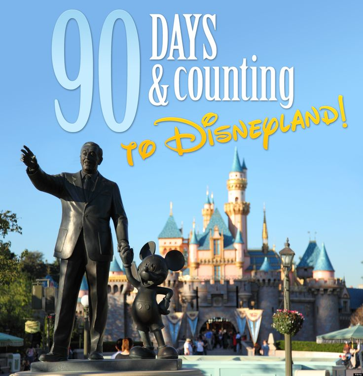 90 Days and counting to Disneyland and our 20th Anniversary California Adventure!