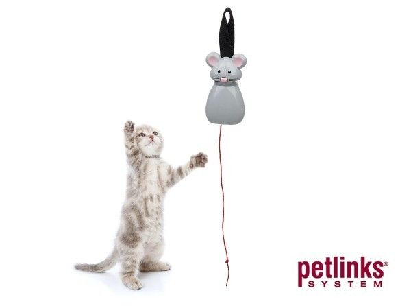 17 best cat toys images on pinterest pet supplies for for Best motorized cat toys