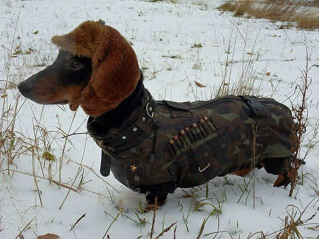 I'm not big on hunting, but this is so darn cute..