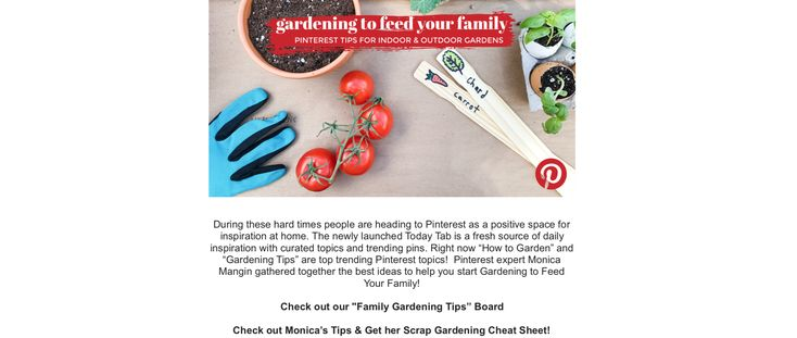 Feed your family by gardening live with kelly and ryan