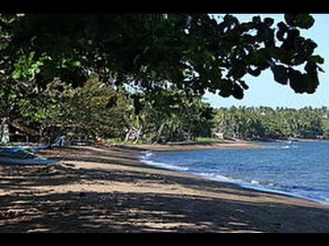 Dauin Dumaguete - Where To Go What To Experience
