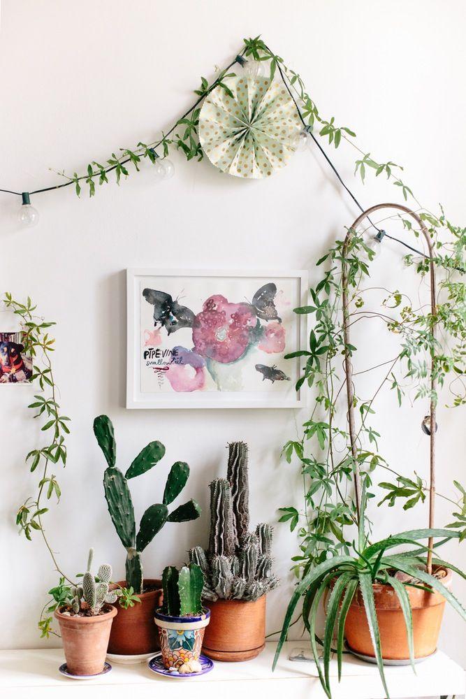 308 besten wohnen mit zimmerpflanzen urban jungle bilder auf pinterest zimmerpflanzen. Black Bedroom Furniture Sets. Home Design Ideas