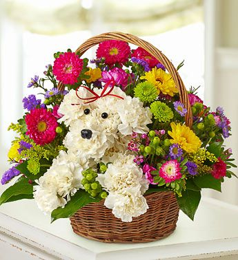 a-DOG-able™ in a Basket - a-DOG-able® arrangement of the freshest carnations, Viking poms, asters, statice, solidago, waxflower, button poms and monte casino $59.99- $64.99