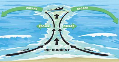 Don't swim against the rip current. Swim parallel to the shore until you can safely escape the current.