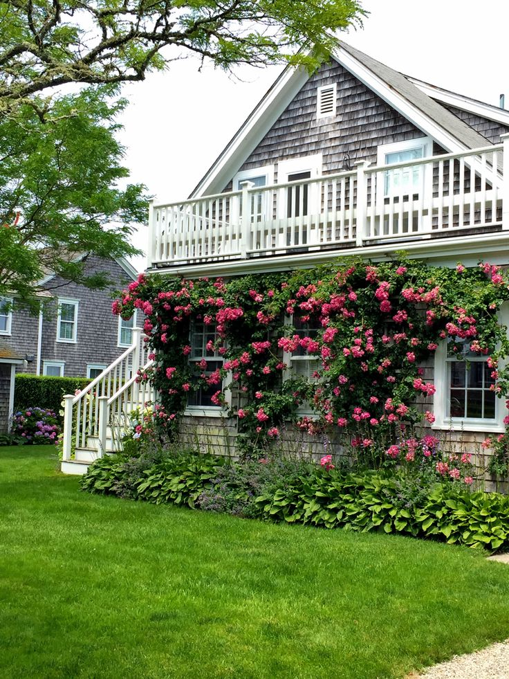 3923 best cape cod nantucket islands and homes images on for Bungalow di cape cod