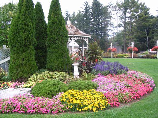 42 best jardin de coniferas images on pinterest for Coniferas de jardin
