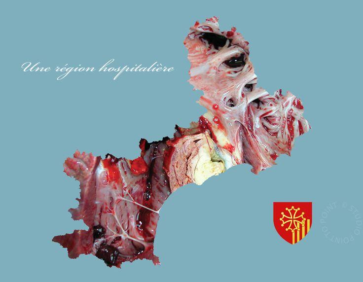 Map Carte Languedoc Roussillon France