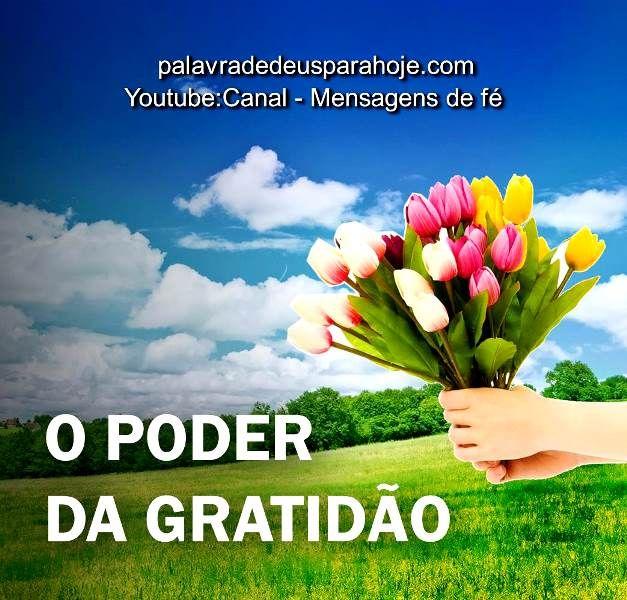 O poder da gratidão - Para ouvir essa mensagem, salmo ou oração acesse o link do blog: http://palavradedeusparahoje.com/index.php/2017/03/08/o-poder-da-gratidao/