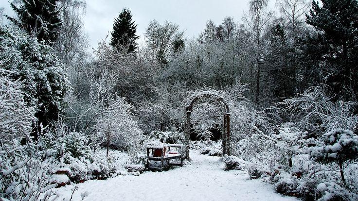 Der Schnee ist da.  ... Auch bei uns. Pünktlich um 3.00 Uhr heute morgen ging es los. Manchmal ist die Wettervorhersage schon ziemlich genau. Zumindest für die nächsten Stunden. :-)