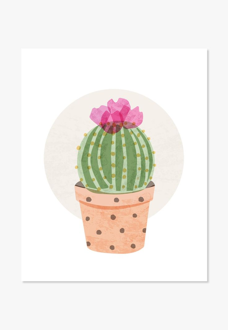 Original watercolor illustration of a ball cactus in bloom. For nurseries, bedrooms, family rooms and workspaces. A nice housewarming gift. One in a series of Cute Cacti - Archival full-color print on