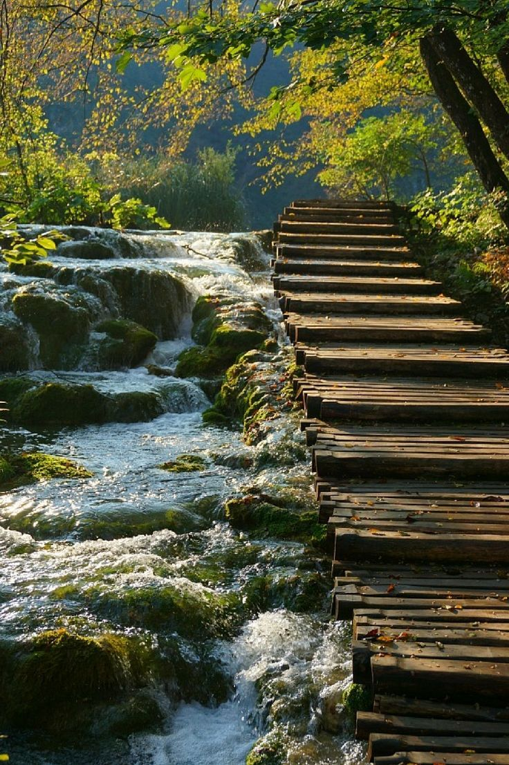 Planning a trip to Croatia? Don't miss Plitvice Lakes Nationl Park. So many waterfalls! Click to find out more.