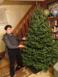 Gerald Saul: Finally: THE TREE