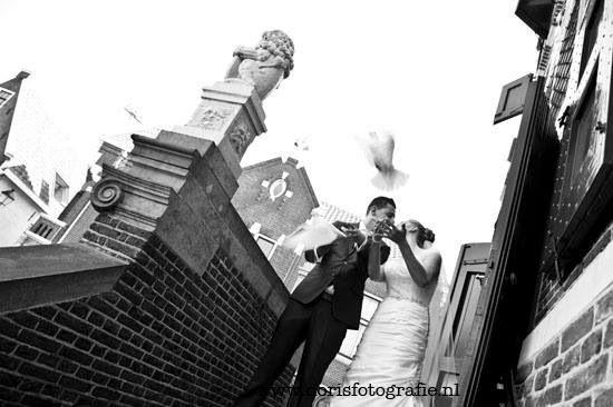 Duiven horen bij een bruiloft