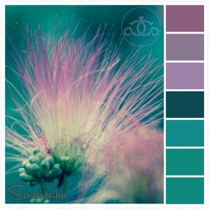 Szerelmes színek