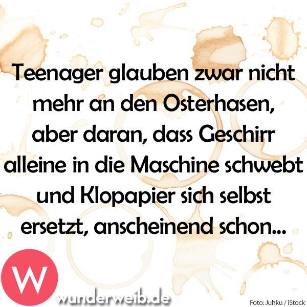 <p>Teenager glauben zwar nicht mehr an den Osterhasen, aber daran, dass Geschirr alleine in die Maschine schwebt und Klopapier sich selbst ersetzt...</p>