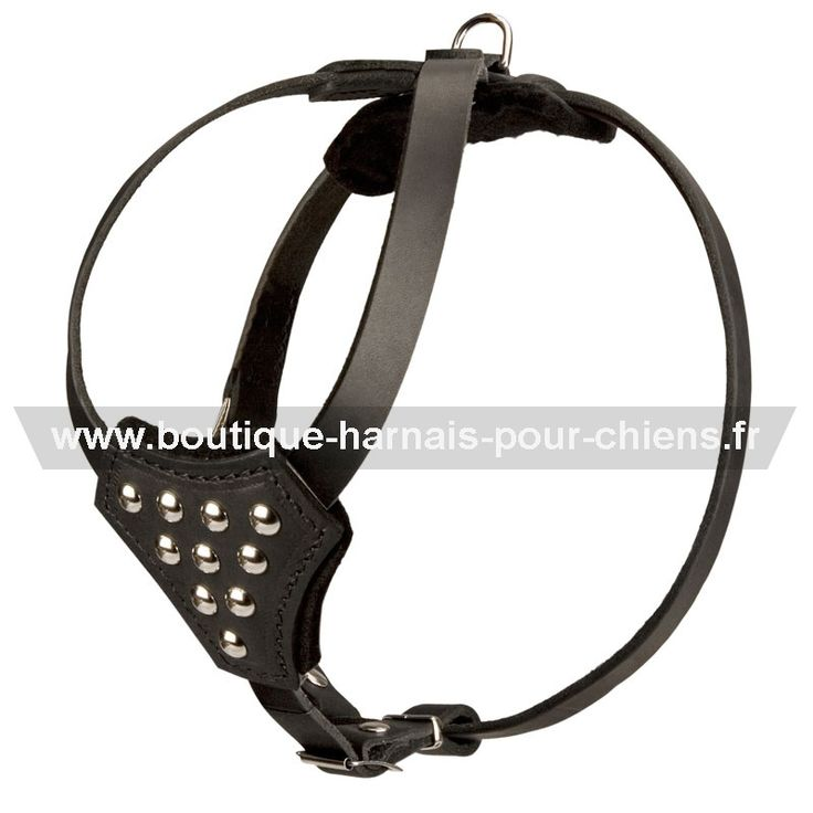 #Harnais de luxe en cuir véritable, joliment décoré de rivets ronds pour toutes activités avec votre #chien ->  52,10 €   @fordogtrainersf Pensez à mentionner «J'aime» si ce produit vous plaît.