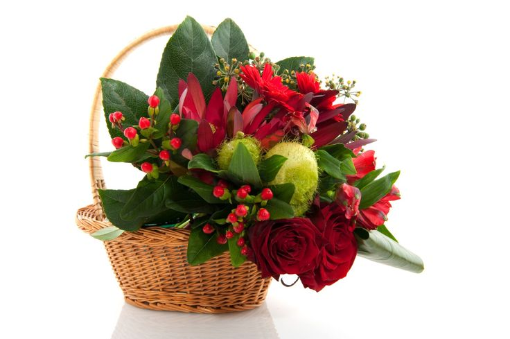 #christmasflowers #wintergift #redflowers