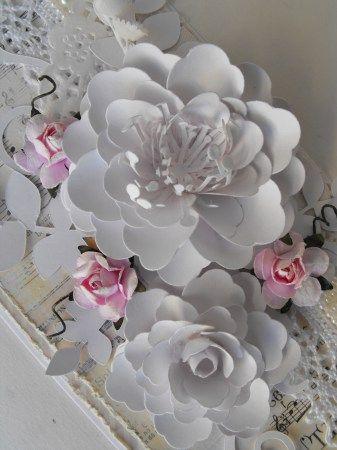 Arianna Blooms pics 015