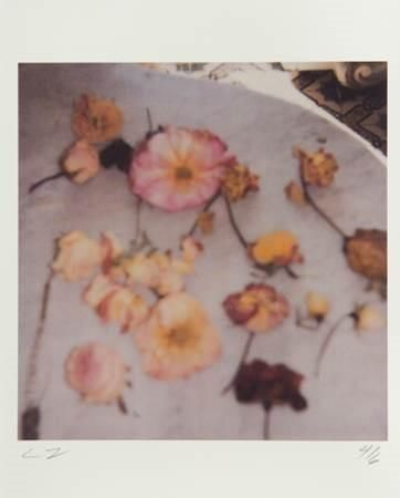 Poloroid by Cy Twombly.