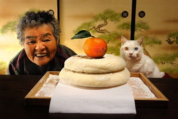 La hermosa historia de una anciana y su gato en 19 fotografías