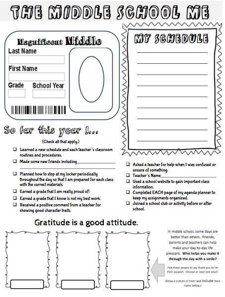 Middle School Me self-reflection project- perfect for student-led conferences, portfolios or new years resolutions! $