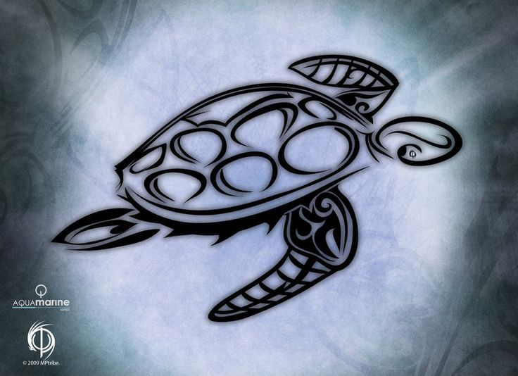 This would make a nice sea turtle tattoo.