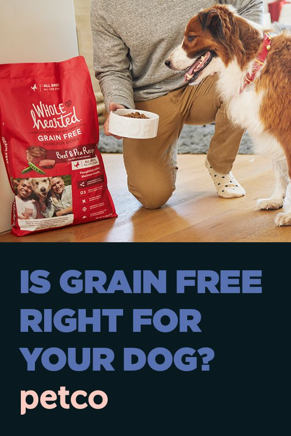 Grain Free Diets For Dogs Petco Free Dog Food Grain Free Dog Grain Free Diet