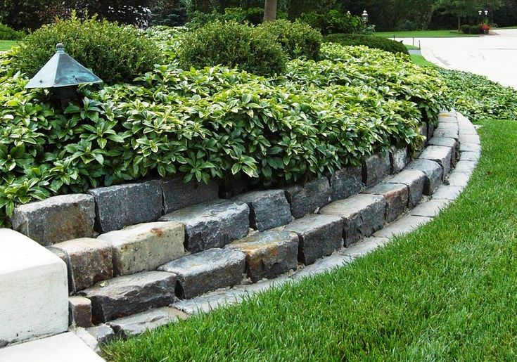 25 best garden  path and kerb edging images on pinterest