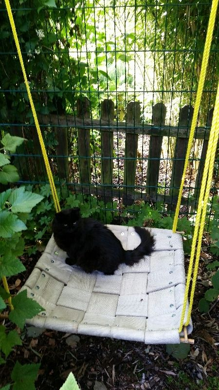 Outdoor fire hose hammock for cats Feuerwehrschlauchhängematte für Katzen #fire #hose  #cat #diy #hammock