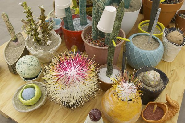 Lisa SanditzDetail Cacti Display, 2014