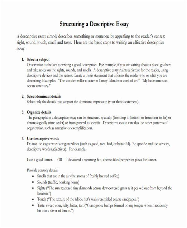 Example Of Descriptive Essay Fresh 7 Sample Writing Exemplification