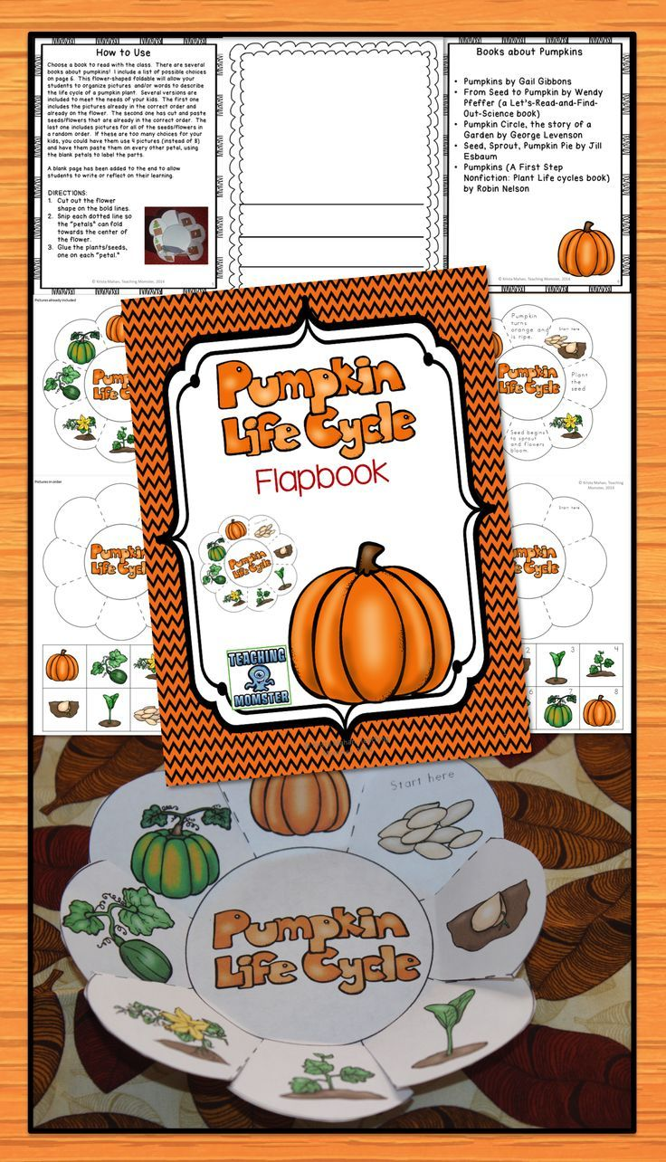 worksheet Parts Of A Pumpkin Worksheet 17 ideas about pumpkin life cycle on pinterest foldable activity that allows students to put the in order lots of