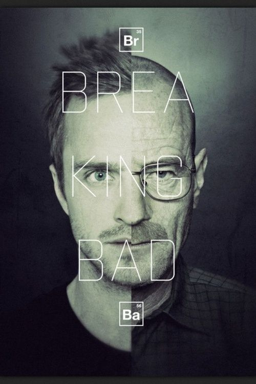 Breaking Bad by Michael Stevenson... i like the way the text is over laid here... simple and delicate