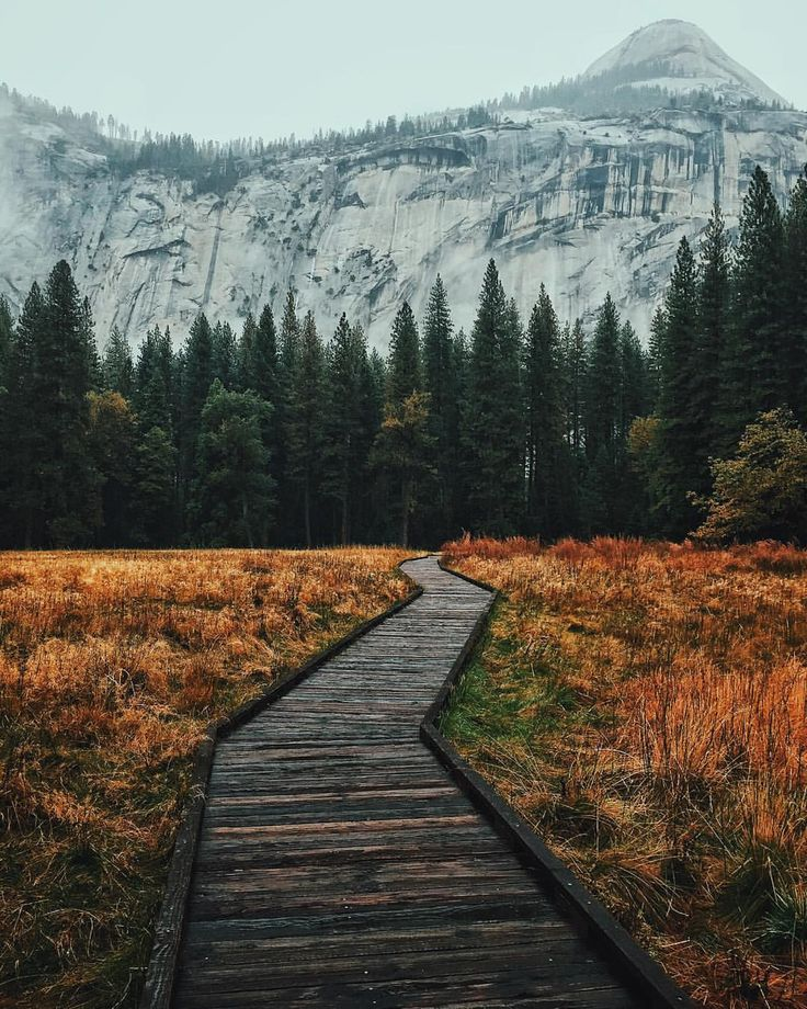 Yosemite National Park Vacations: 25+ Best Ideas About Yosemite National Park On Pinterest