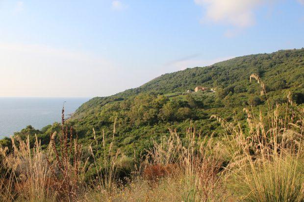 Blick auf das Anwesen Vignazzurra, in der Nähe von Santa Maria Castellabate, Cilento / www.outandindoor.wordpress.com