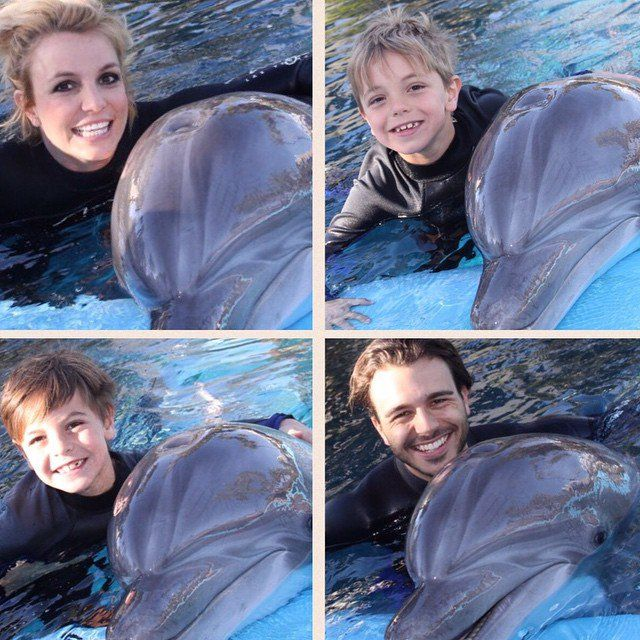 Pin for Later: Britney Spears's Sweet Family Snaps Will Make You Love Her Even More  Britney and Charlie took Jayden and Sean to swim with dolphins at The Mirage hotel in Las Vegas in February.