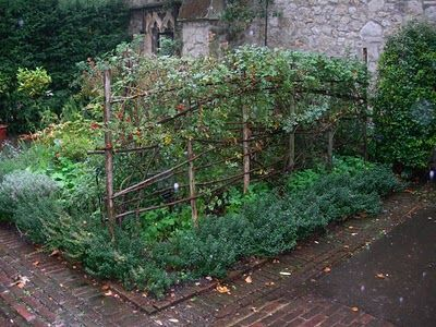 Love this twig and branch trellis for bush beans and peas.