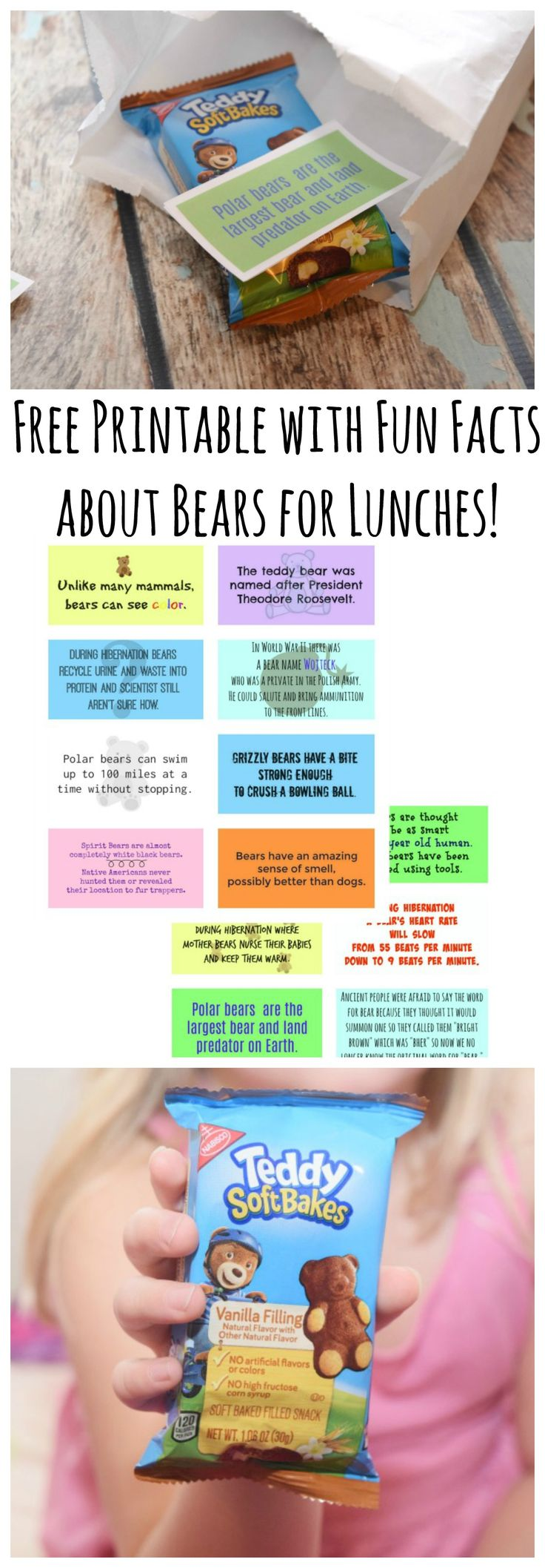 Grab these FREE printables full of fun facts about bears for kid lunch boxes! Perfect to go along with TEDDY Soft Bakes! #DiscoverTEDDY #ad