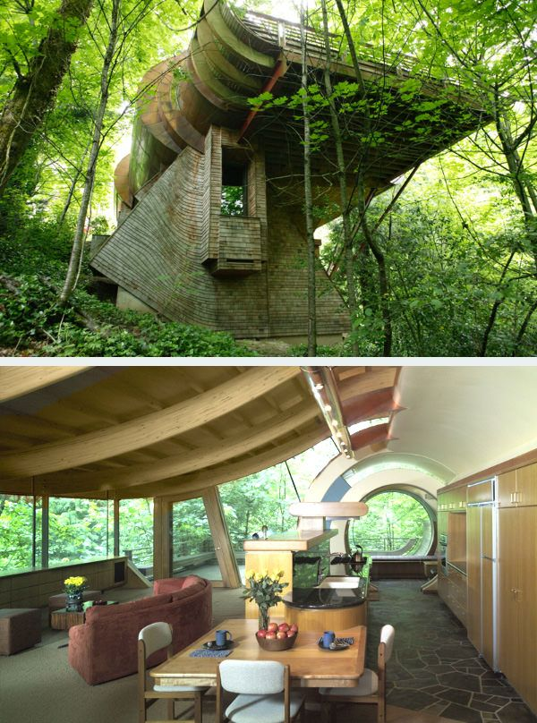 Best Tree Houses Images On Pinterest Beautiful Architecture - Contemporary banyon treehouse california